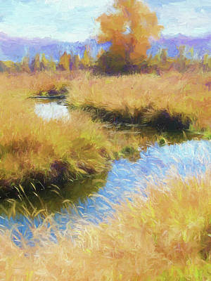 Digital Art - Heber Valley Marsh by David King