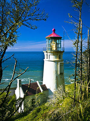 Photograph - Heceta Lighthouse I by Dale Stillman