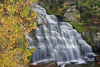 Hector Falls Fall Color Art Print by Dean Hueber