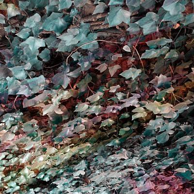 Resin Digital Art - Hedera by Filippo B