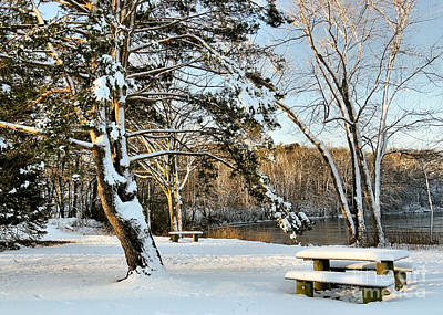 Photograph - Hedge Pond Plymouth Ma by Janice Drew