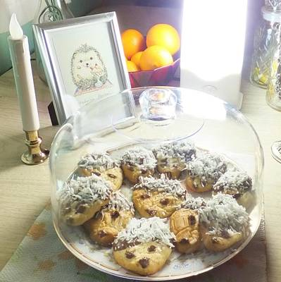 Photograph - Hedgehog Shortbread Cookies by Denise Fulmer