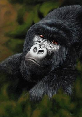 Painting - Heir Apparent - Mountain Gorilla by Jason Morgan