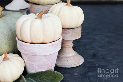 Photograph - Heirloom And Mini Pumpkins On Rustic Table by Stephanie Frey