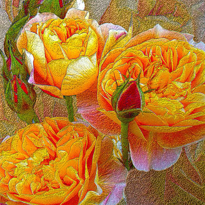 Photograph - Heirloom Impressionist Roses by Michele Avanti