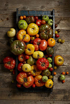Y120817 Photograph - Heirloom Tomatoes by Lew Robertson