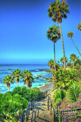 Photograph - Heisler Park Beach Laguna Beach by David Zanzinger