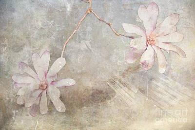 Helena Art Print by Elaine Teague
