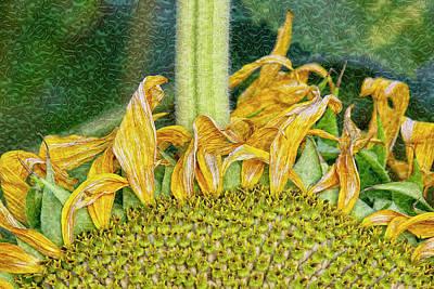 Digital Art - Helianthus Swirlifloris by Becky Titus