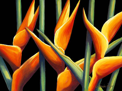 Heliconia Painting - Heliconia by Victoria Page