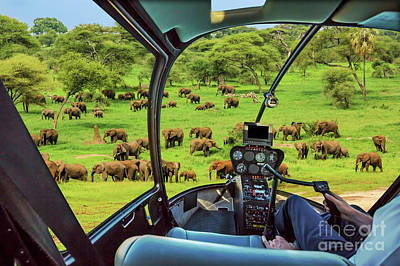 Photograph - Helicopter On Tarangire National Park by Benny Marty