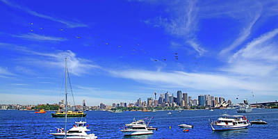 Photograph - Helicopters Flying Over Sydney by Miroslava Jurcik