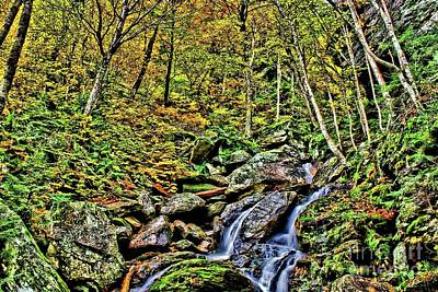 Photograph - Hellbrook Cascades In Autumn by Matthew Winn