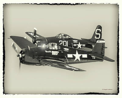 Photograph - Hellcat And Bearcat by Douglas Castleman