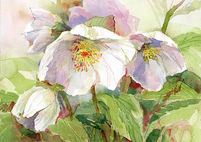 Painting - Hellebore by Garden Gate