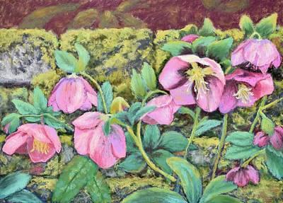 Painting - Hellebores by Nancy Jolley