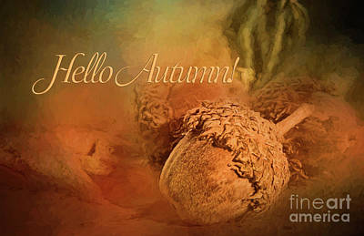 Photograph - Hello Autumn by Pam  Holdsworth
