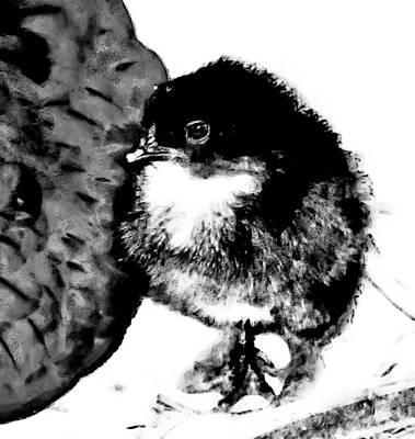 Hello Baby Chick Art Print
