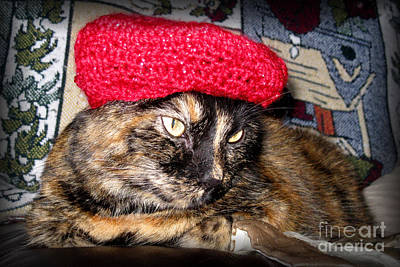 Painting - Hello Pearl 31. Cat With A Red Beret by Oksana Semenchenko