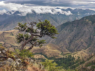 Hells Canyon Art Print by Leland D Howard