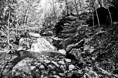 Moss Photograph - Hells Hollow Bw by Pittsburgh Photo Company