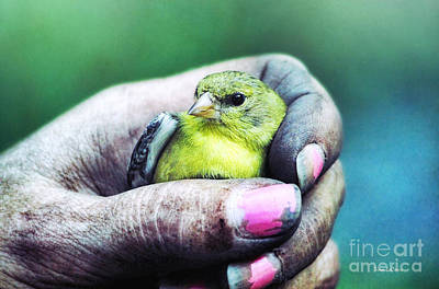 Photograph - Helping Hand by Tina LeCour