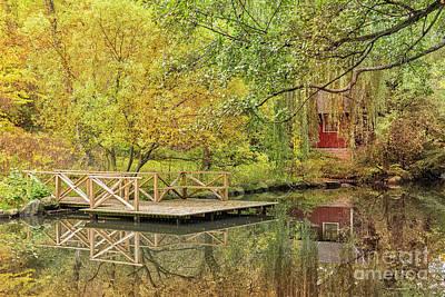 Helsingborg Photograph - Helsingborg Jordbodalen Forest Pond by Antony McAulay