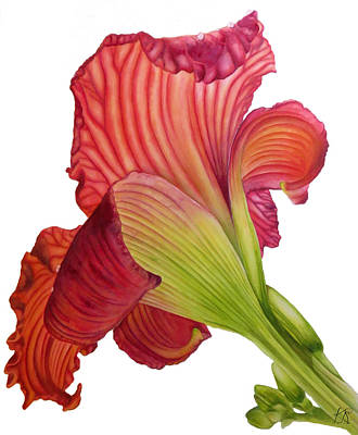 Wall Art - Painting - Red Lily by Kristina Spitzner