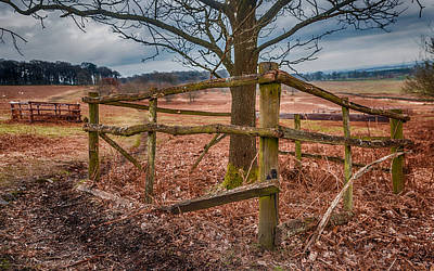 Photograph - Fenced In by Nick Bywater