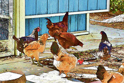 Yellow Beak Digital Art - Hen Party Painterly I  by Linda Brody