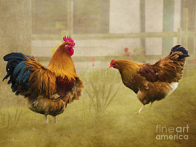 Hen Party Dancin The Night Away Art Print by Linsey Williams
