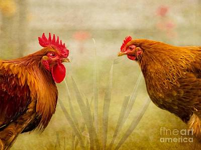 Purebred Digital Art - Hen Party Do You Come Here Often by Linsey Williams