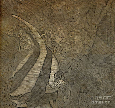 Photograph - Heniochus Butterfly Fish by Steven Parker