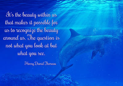 Coastal Quote Wall Art - Photograph - Henry David Thoreau Quote On Beauty With Dolphins by Stephanie Laird