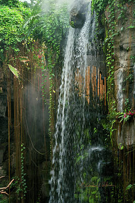 Photograph - Henry Doorly Waterfall by Edward Peterson