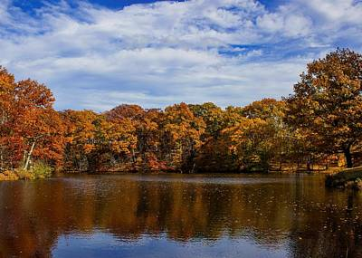Photograph - Henry's Pond by Ron Grafe