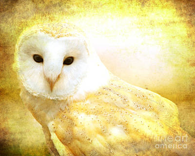 Animals Digital Art - Her majesty by Heather King