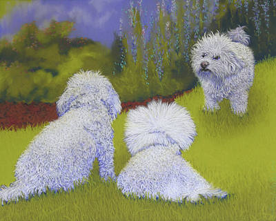 Havanese Pastel - Her Royal Court by Tracy L Teeter