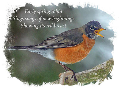 Photograph - Heralding Spring Haiku by Constantine Gregory