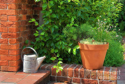Photograph - Herb Gardening by Jill Lang