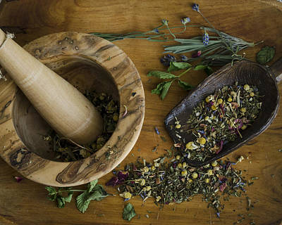 Photograph - Herbal by Heather Applegate