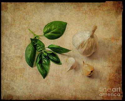 Photograph - Herbs #055 by Hans Janssen