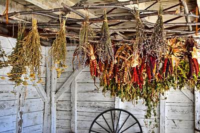 Photograph - Herbs Drying Shaker Village by Naturally NH