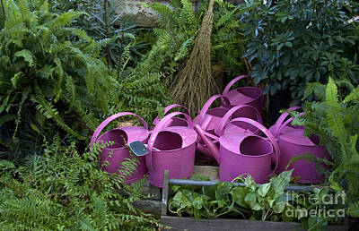 Photograph - Herd Of Watering Cans by Crystal Nederman