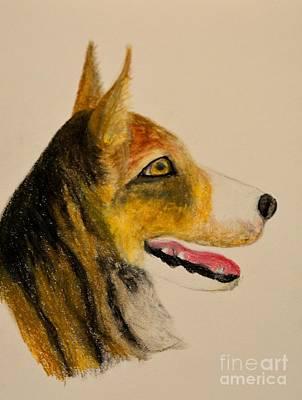 Pastel - Herder by Maria Urso