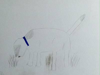 Drawing - Here Boy by Alohi Fujimoto