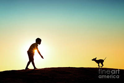Mans Best Friend Photograph - Here Boy by Tim Gainey