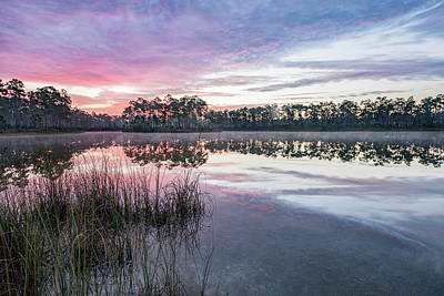 Florida House Photograph - Here Comes The Color by Jon Glaser