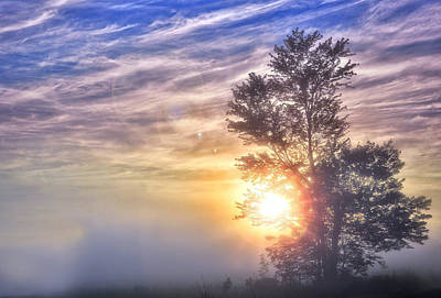Photograph - Here Comes The Sun by Bernadette Chiaramonte