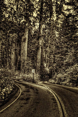 Photograph - Here The Road Divides by Roger Passman